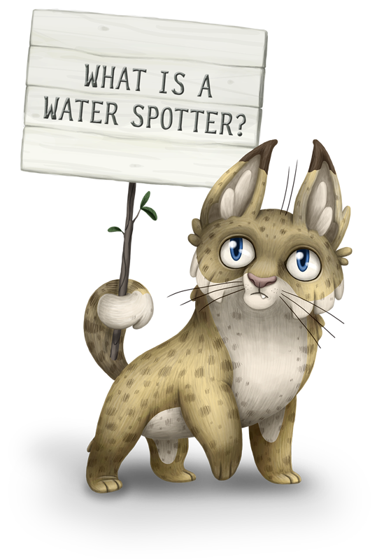 What is a Water Spotter?